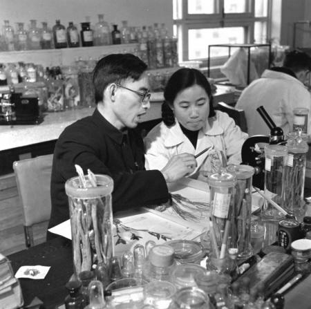 帮助屠呦呦确定了青蒿提取物的立体化学结构:C15H22O