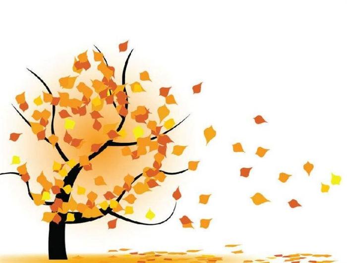 这样的季节,各色树叶,从明黄到金黄到橘黄,色彩绚烂.