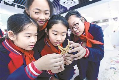 宁波日报社小学平台报刊贵溪市数字图片