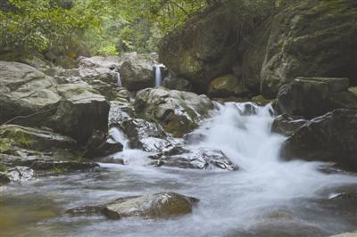 那里一条小溪几乎贯穿整个森林公园,沿溪形成形态各异的迷人风景.