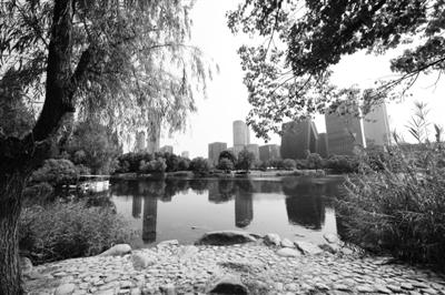 """鄞州公园:""""城市公园""""养成记"""