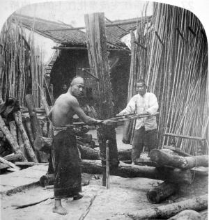 这个锯木场当为供应家具用材(竹木)的