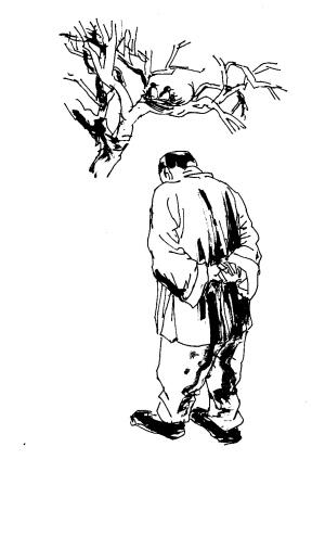动物筑巢的画简笔画